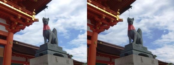 伏見稲荷大社 楼門 宝珠の狐像(交差法)