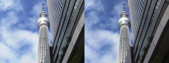 東京スカイツリー外観②(交差法)