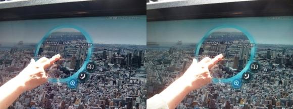 東京スカイツリー時空ナビ(交差法)