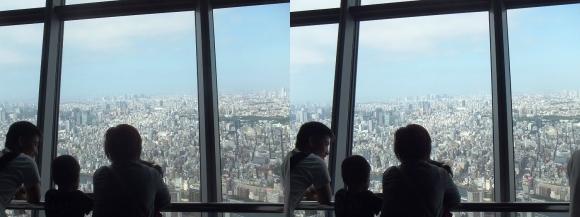 東京スカイツリー展望台⑨(平行法)