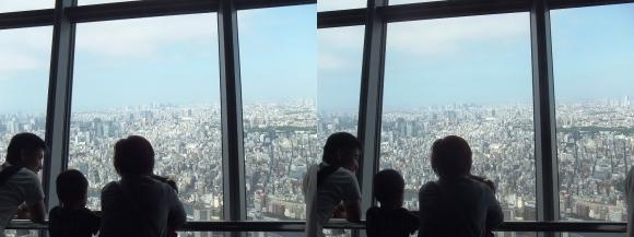 東京スカイツリー展望台⑨(交差法)