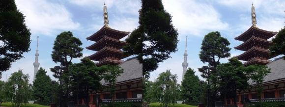 東京スカイツリー・浅草寺五重塔(平行法)