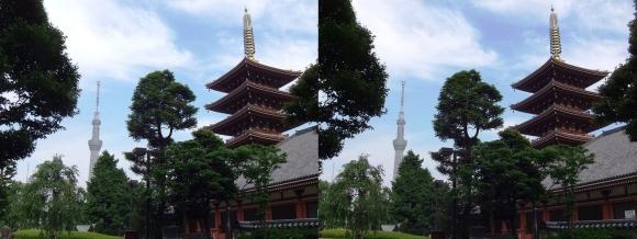 東京スカイツリー・浅草寺五重塔(交差法)