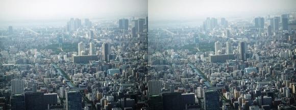 東京眺望⑩(平行法)