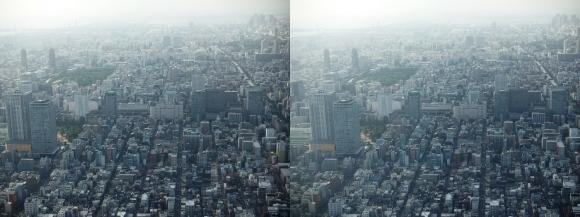 東京眺望⑨(交差法)