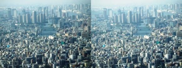 東京眺望⑦(平行法)