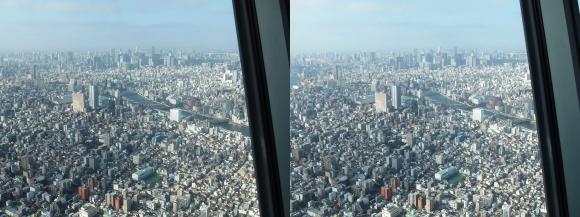 東京スカイツリー展望台③(平行法)