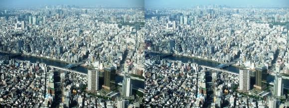 東京眺望②(平行法)