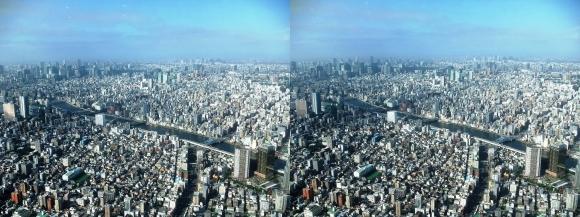 東京眺望①(平行法)