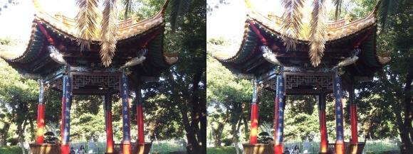 江の島 サムエル・コッキング苑 昆明広場(平行法)