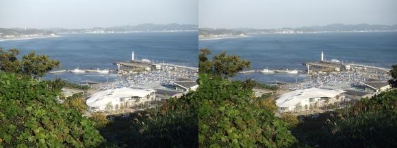 江の島 ヨットハーバー②(交差法)