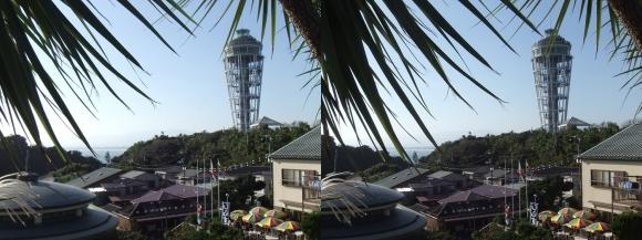 江の島 サムエル・コッキング苑 シーキャンドル③(交差法)