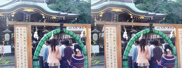 江島神社 辺津宮 茅の輪潜り(交差法)