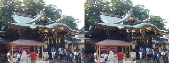 江島神社 辺津宮①(平行法)
