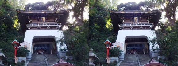 江島神社 瑞心門(平行法)