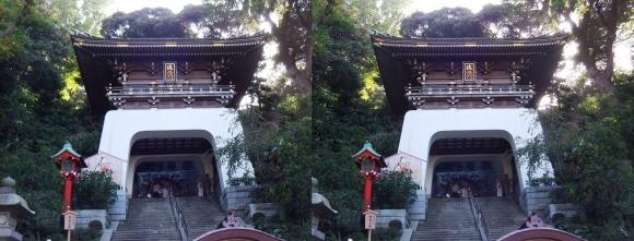 江島神社 瑞心門(交差法)