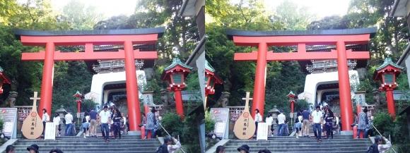江島神社 朱の鳥居(平行法)