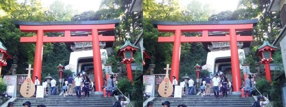 江島神社 朱の鳥居(交差法)