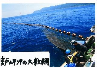 s-室戸岬沖の大敷網