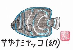 s-CCF20140419.jpg