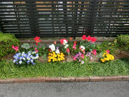 お茶屋さんの花壇1