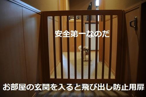 20149hakone21_2014090920464172c.jpg