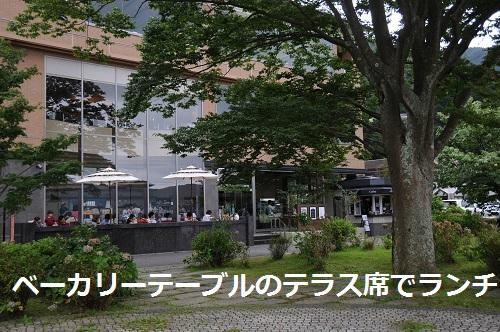20149hakone3.jpg