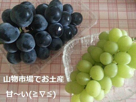 20149hakone41ka.jpg