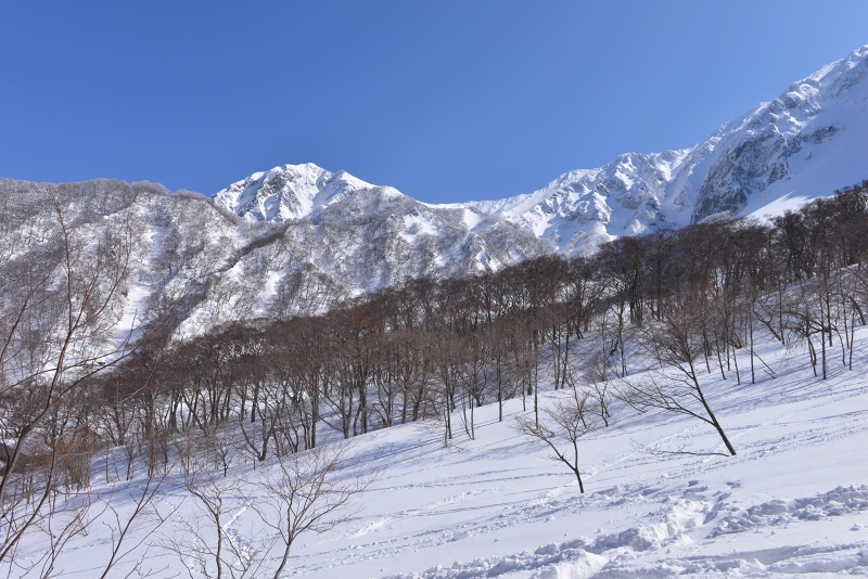 大山 (82)
