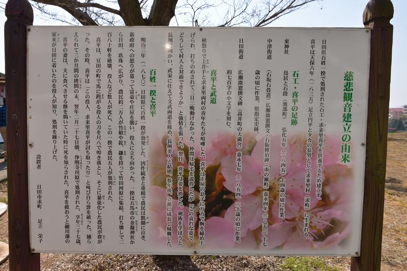 慈悲観音像と河津桜 (2)