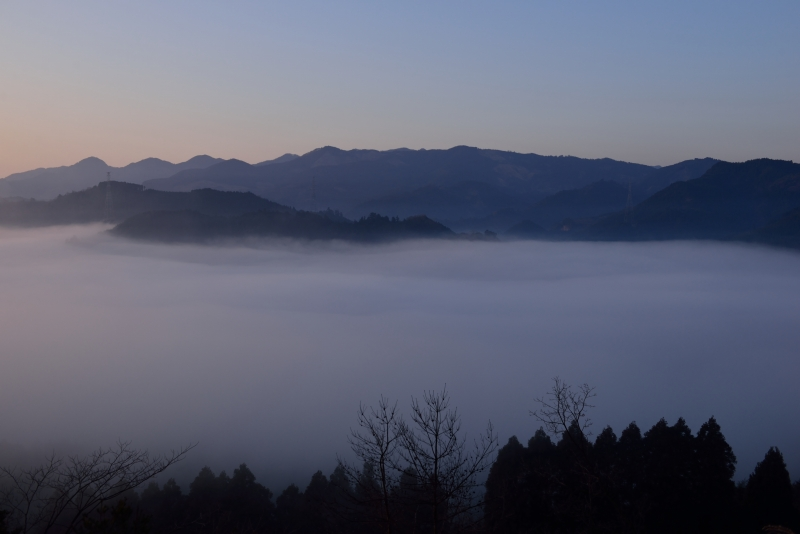 日田の底霧 (12)