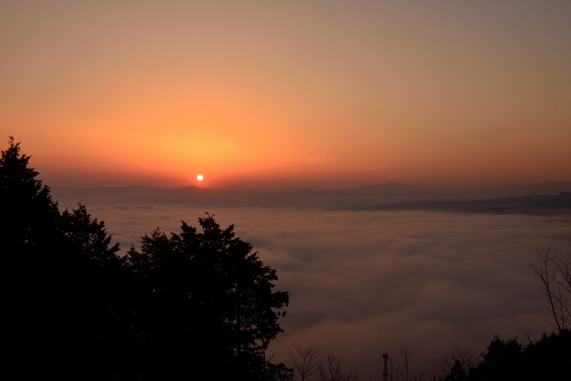 日田の底霧 (10)