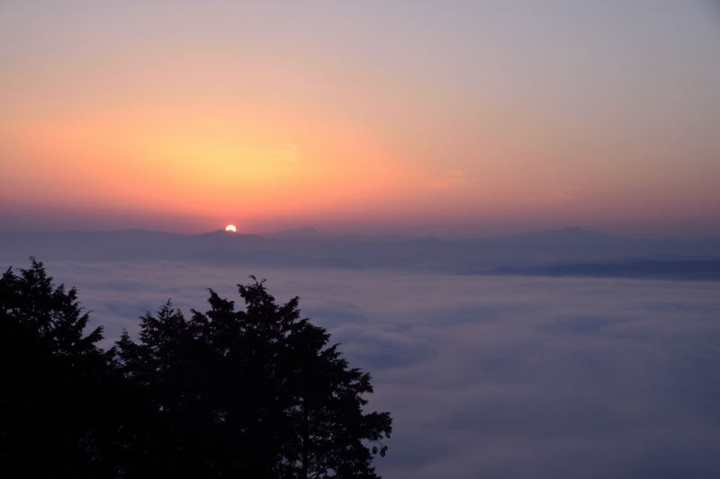 日田の底霧 (7)