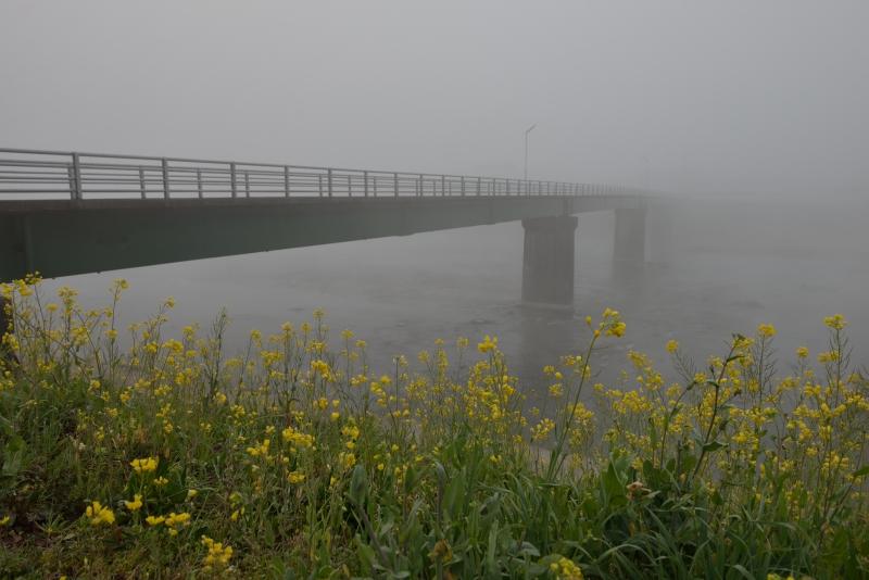 日田の底霧 (17)