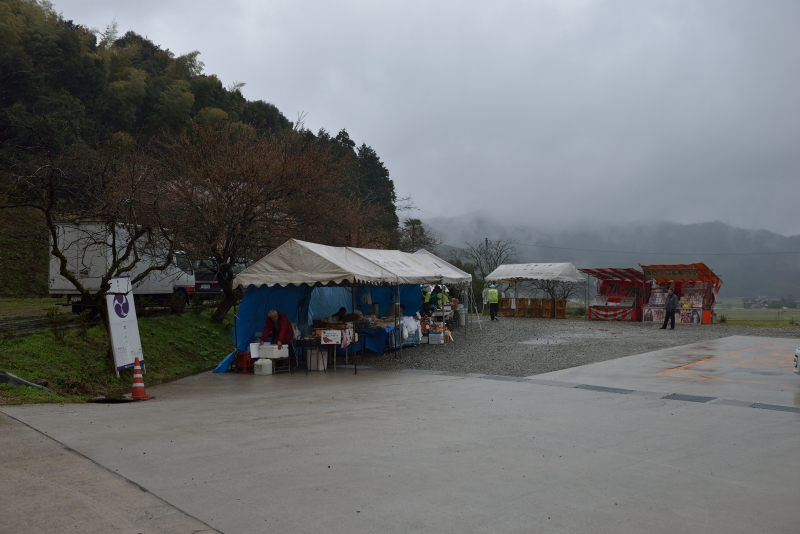 天神山のしだれ桜 (8)