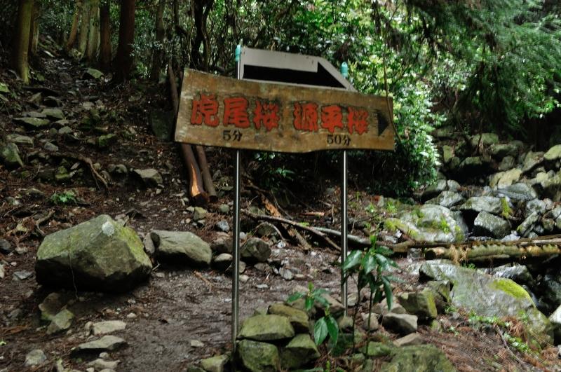 福智山 (2)