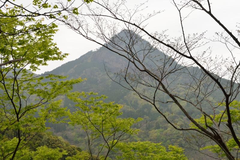 矢筈岳 (11)