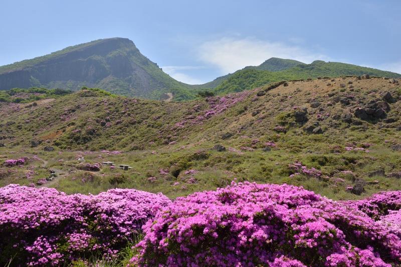 韓国岳 (4)