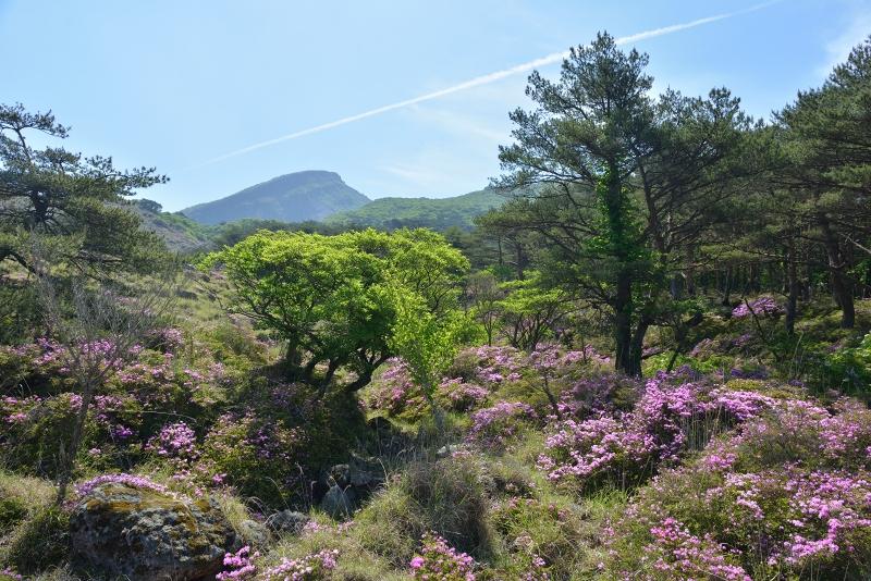 韓国岳 (2)
