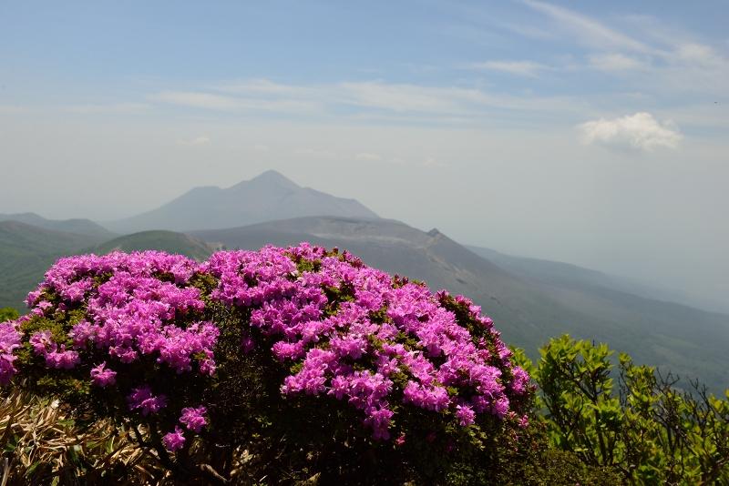 韓国岳 (13)