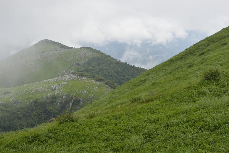 貫山 (1)