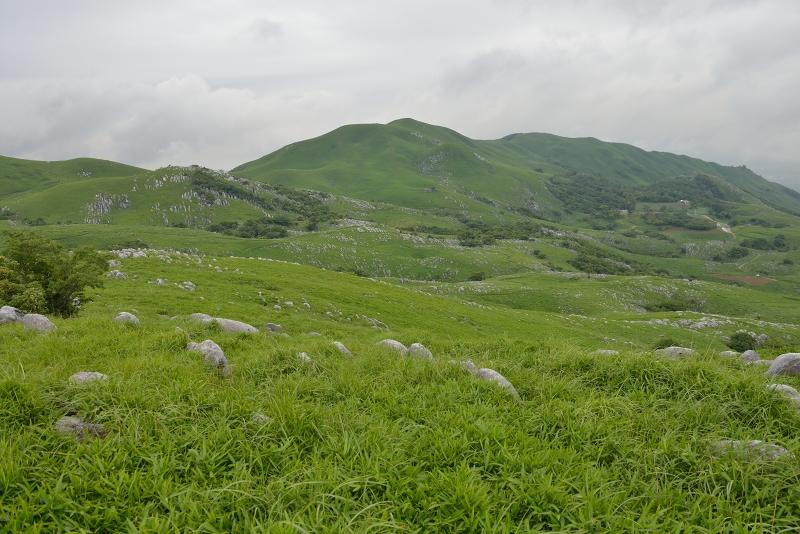 貫山 (12)