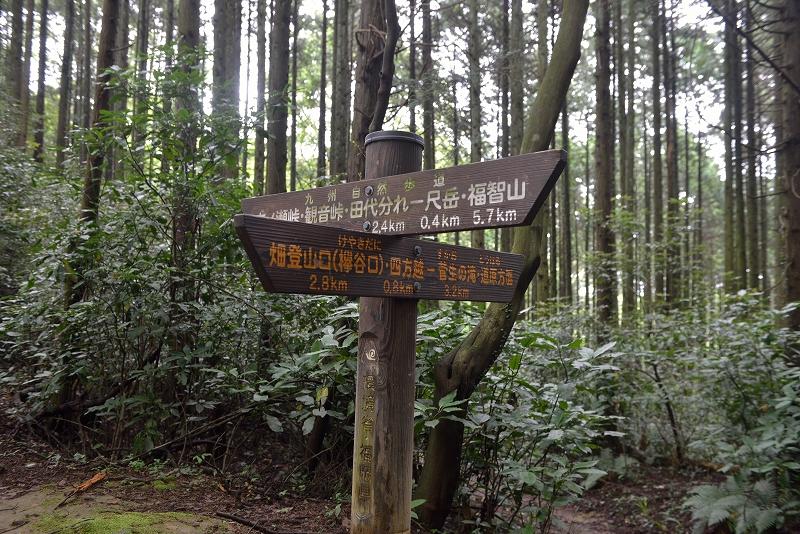 皿倉山~福智山 縦走 (17)