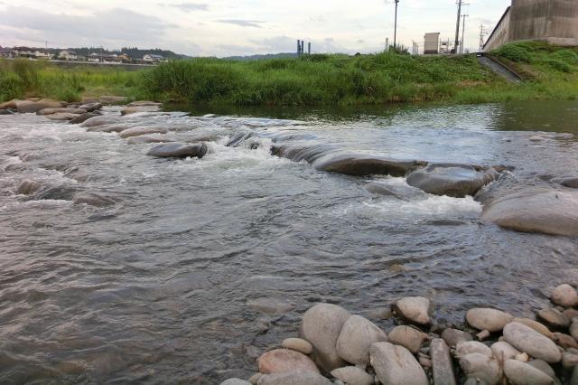三隈川 ランニング (11)