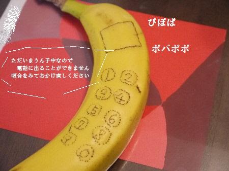 P1260607(1).jpg