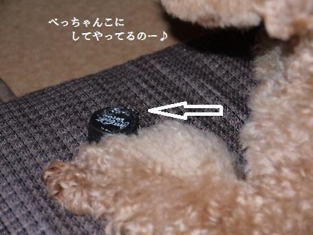 P1280859(1).jpg