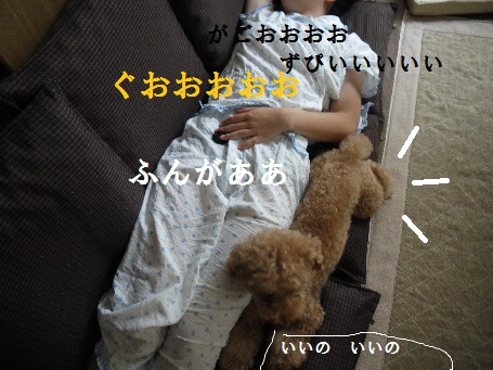 P1280861(1).jpg