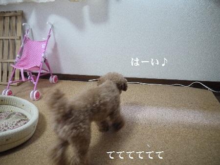 P1280973(1).jpg