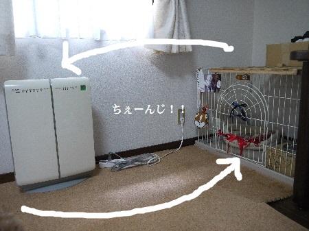 P1280981(1).jpg