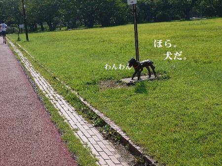 P1290229(1).jpg